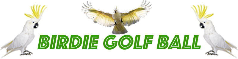 Birdie Golf Ball Store